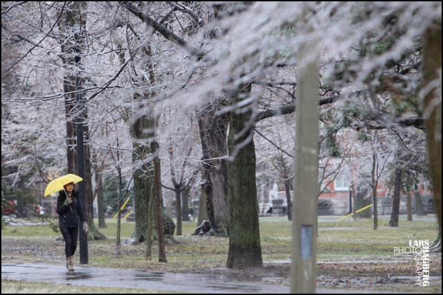 A woman walks through City Park after a freezing rain in Kingston, Ontario on  April 12, 2013. THE CANADIAN PRESS IMAGES/Lars Hagberg